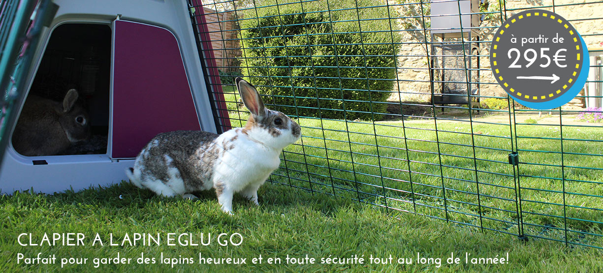 Main Homepage Image FR Eglu Go Hutch Rabbit