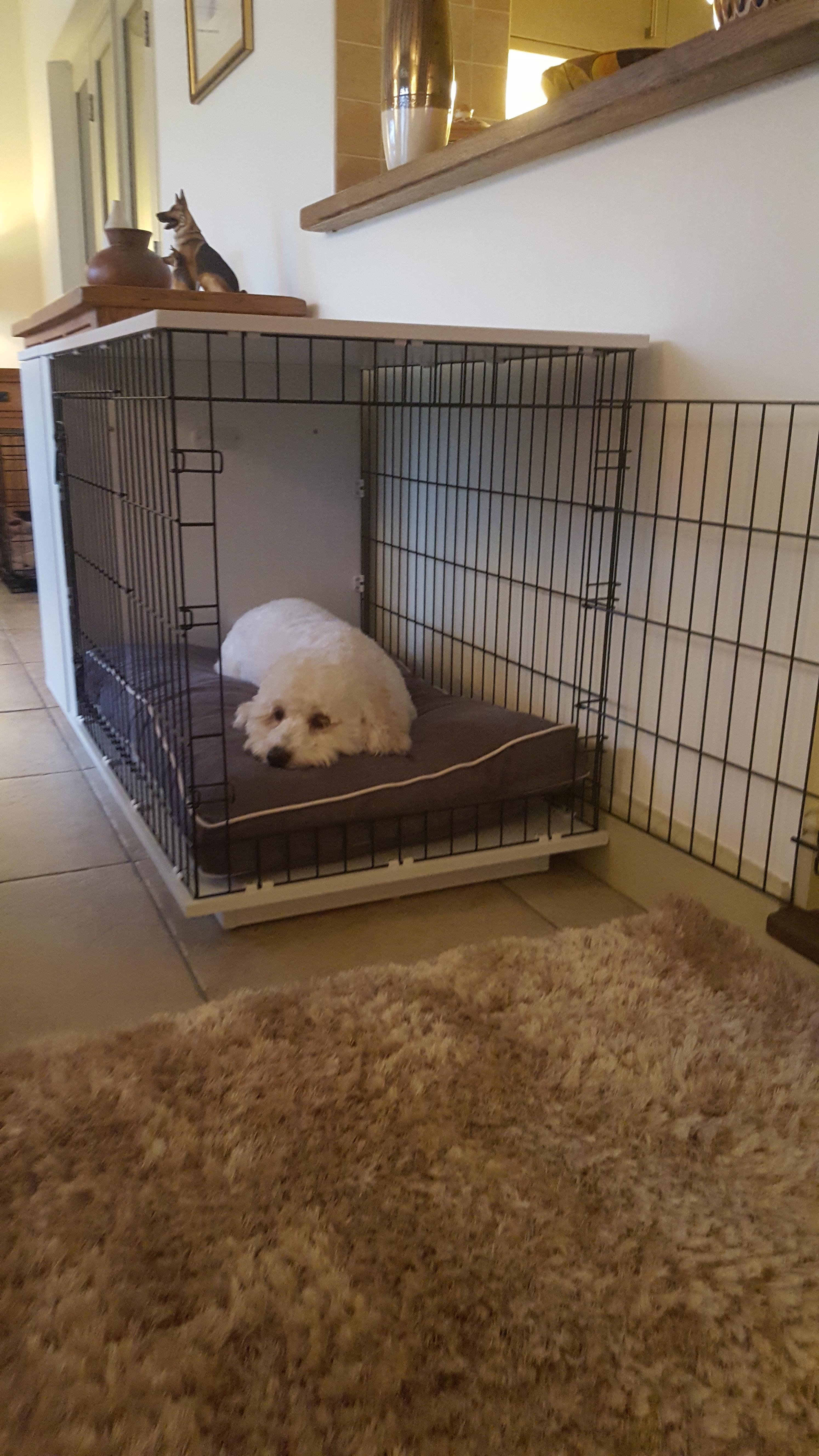 Niche d int rieur pour chiens fido studio chiens omlet for Repulsif pour chien interieur