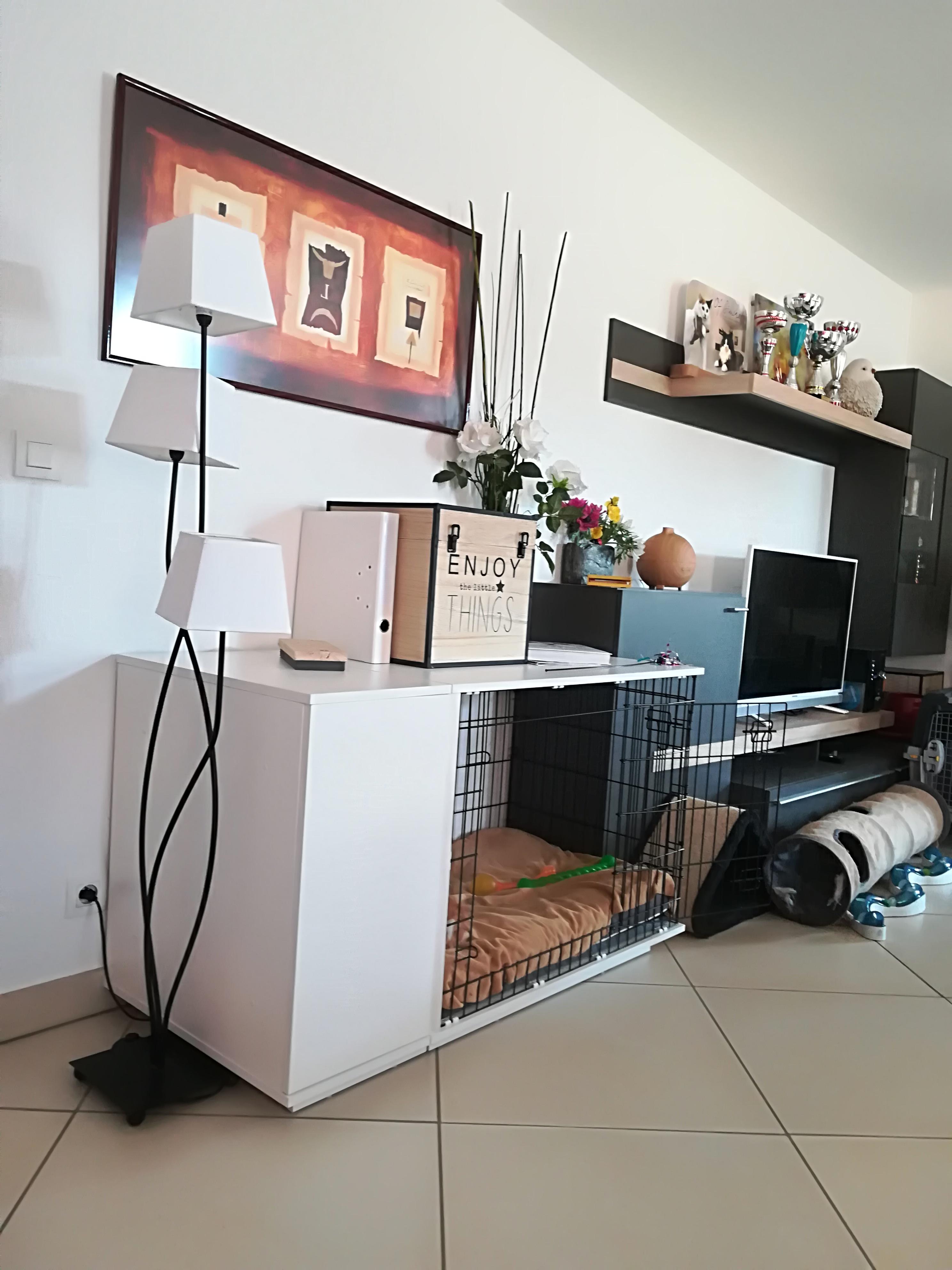 https://www.omlet.fr/images/originals/niche-fido-studio-notre-niche-fido-36-img-20180220-120009_0b3ada18.jpg